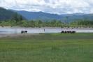 Монголия 1
